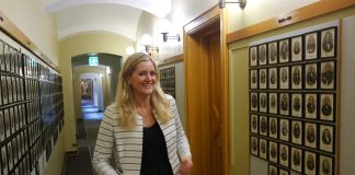 Emilie Enger Mehl hadde akkurat fått jobb som advokatfullmektig i Elverum. Men veljarane i Hedmark hadde andre planar for 24-åringen. Foto: Runar B. Mæland