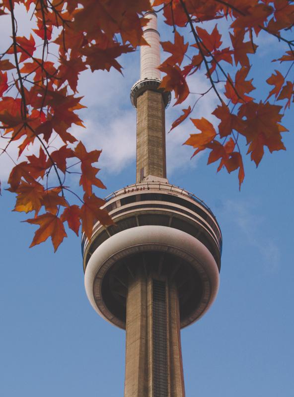 Canada og Toronto vinn på at turistane sviktar USA. Foto: Nadine Shaabana/Unsplash