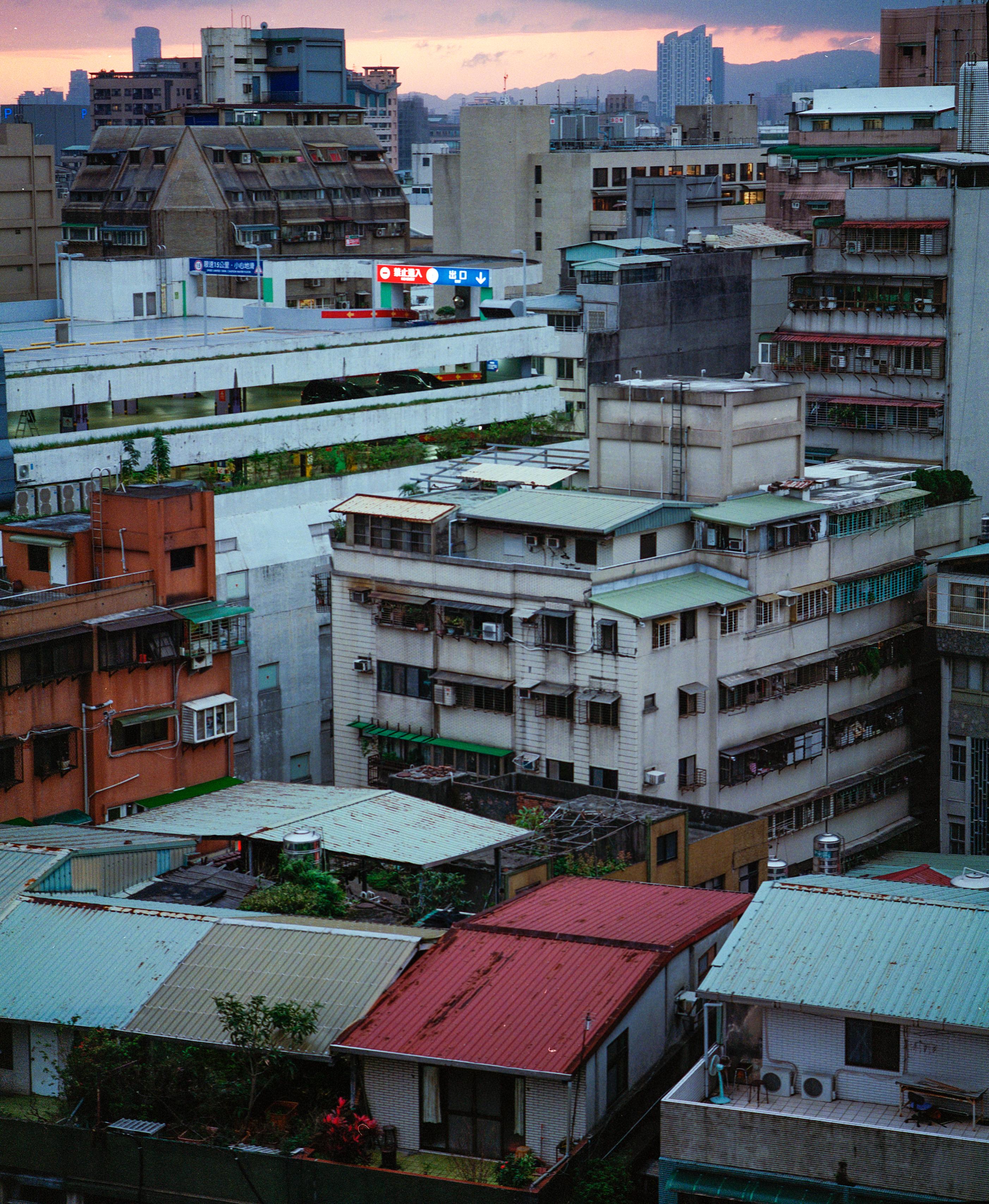 Fleire hundre tusen menneske har busatt seg på Taiwans hustoppar (Foto: Amanda O. Berg)