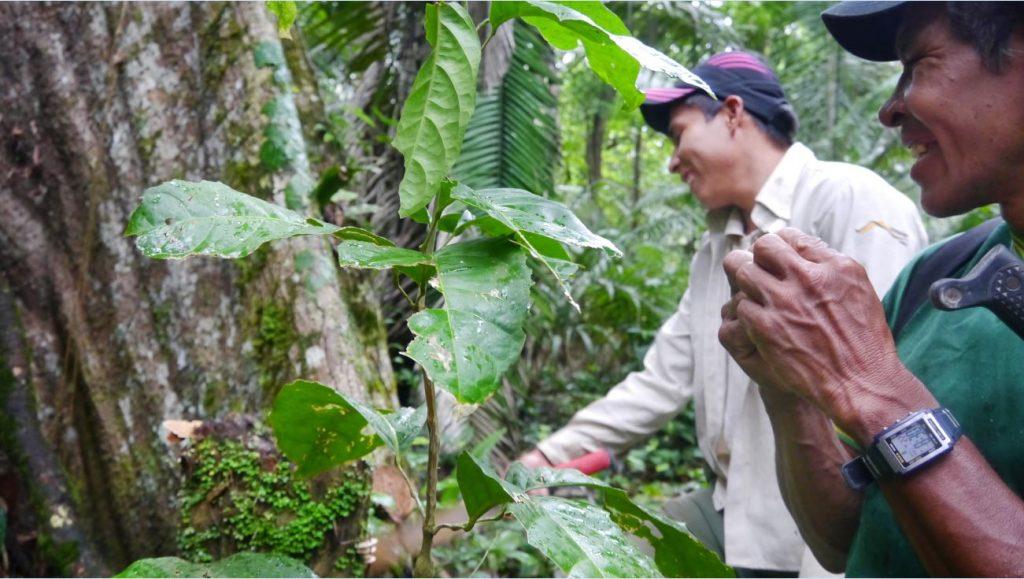 – Eg har møtt menneske som er utruleg audmjuke for naturen. Dei spør skogen om lov før dei går inn i den og takkar naturen for det den gir oss. Foto: Privat