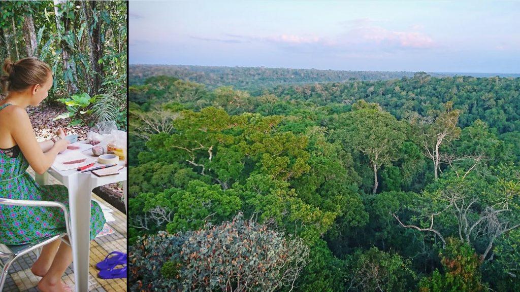 Utsikt over regnskogen Foto: Privat