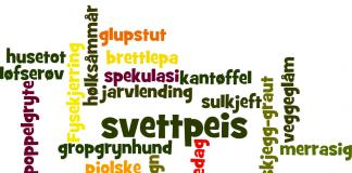I boka Fysekjerringer og glupstuter. Norges morsomste dialektuttrykk tek språkforskar Tor Erik Jenstad oss med på ei rundreise i det norske dialektlandskapet. Ordsky: Wordle.net