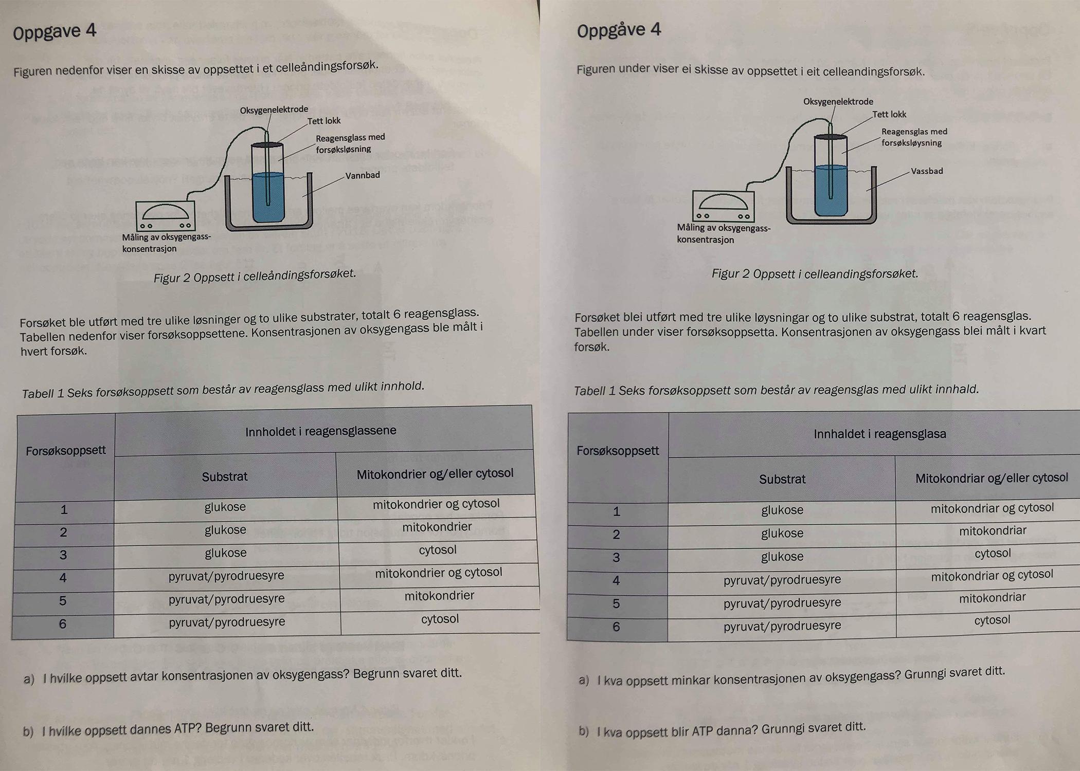Til venstre er bokmålsversjonen og til høgre er nynorskomsettinga, som Norsk Målungdom har klaga inn til Utdanningsdirektoratet. Foto: Norsk Målungdom