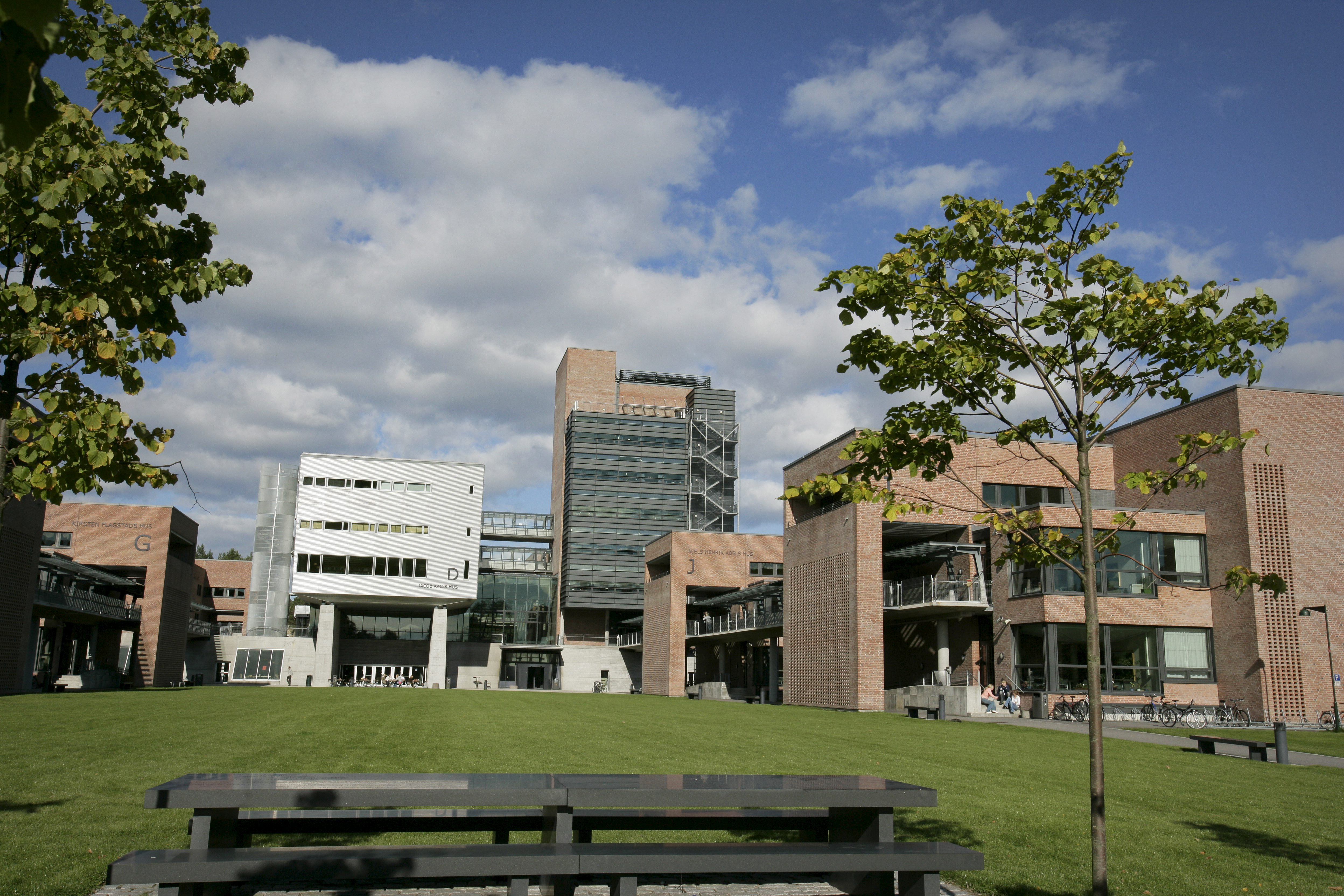 Universitet i Agder i Kristiansand auka nynorskinnslaget på nettsidene sine frå 4,3 til 5,1 prosent i fjor. Foto: Tor Erik Schrøder / NTB scanpix / NPK